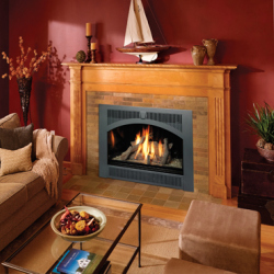 Hearthview HO Gas Fireplace