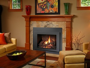 Gas fireplace as fuel option - Behr Necessities